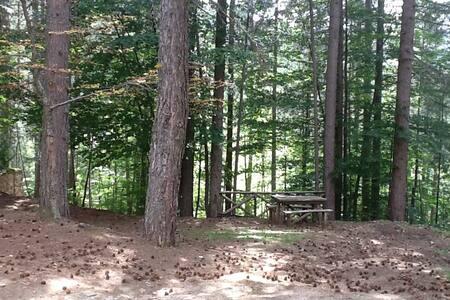 Appartamento vicino ai boschi più belli della Sila - Spezzano della Sila