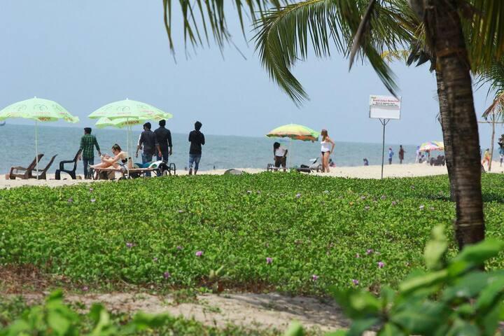 MARARI PEACE HOMESTAY-01(Marari beach)