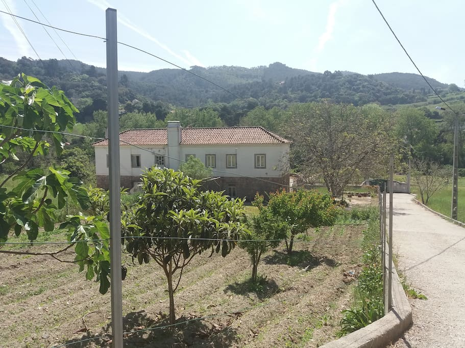 Outside view of the farm
