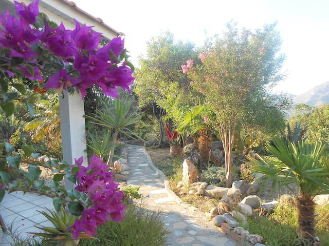 Wildgarden - Guest House - Asomatos - Huoneisto