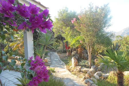 Wildgarden - Guest House