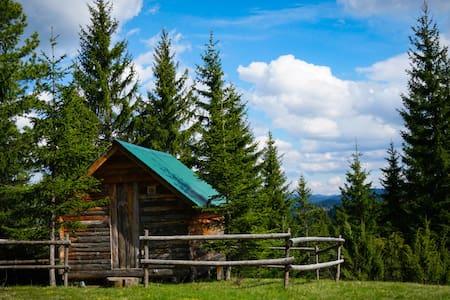 """Eco Camp """"Drno Brdo"""""""