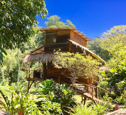 TREEHOUSE the Green Frog Romantic setting & Pool