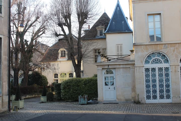 Loft in 17th Century Mansion - City Center Parking - Dijon - Huis