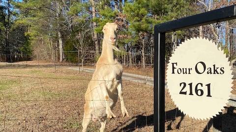 Four Oaks Farm peaceful retreat in nature