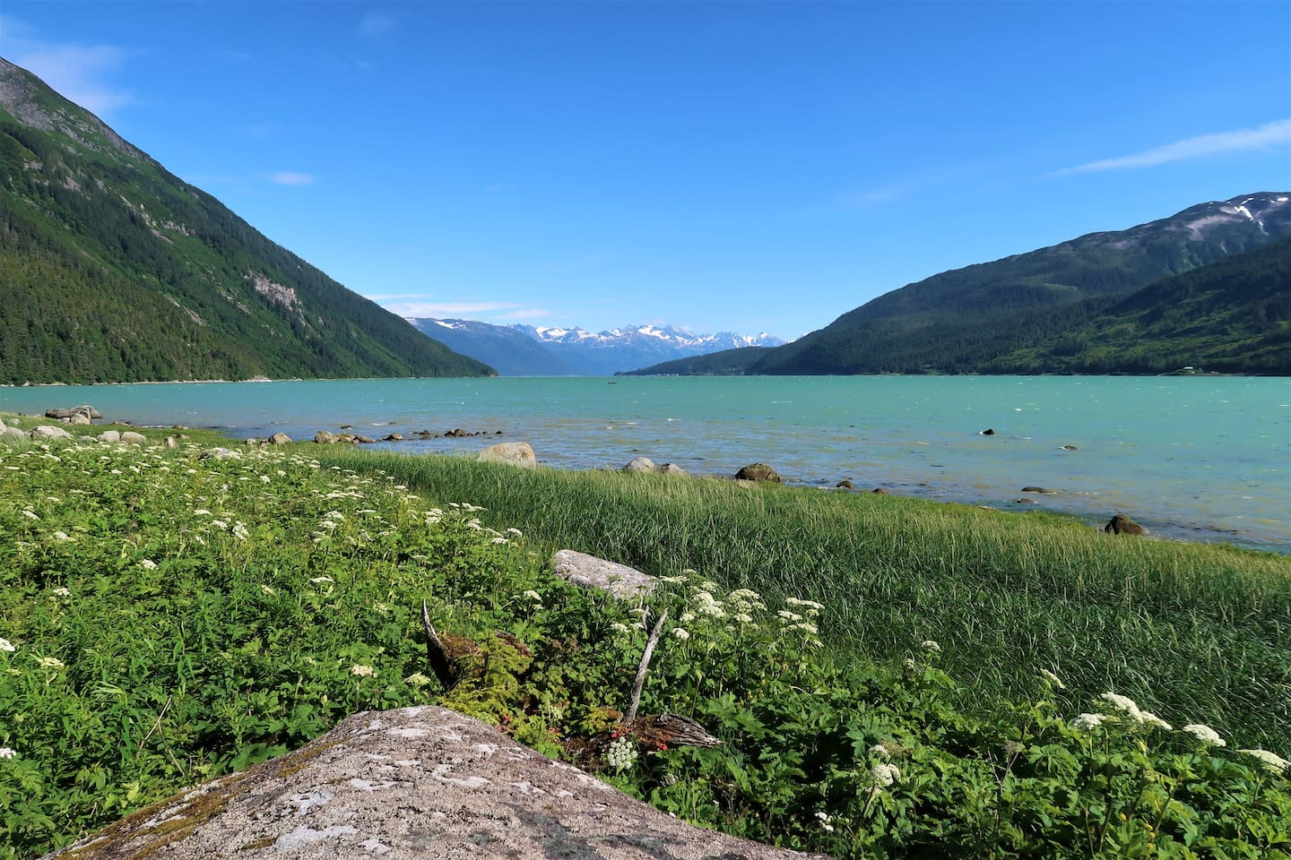 Lutak Inlet is the front yard.  Chilkoot River empties into the ocean right in front of the house.  There are large tidal flats to explore at low tide and fishing and wildlife right out the front door.
