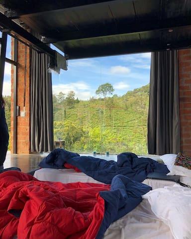 Wake upto this splendid view