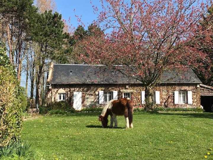 Maison de campagne sur les falaises de Saint Jouin