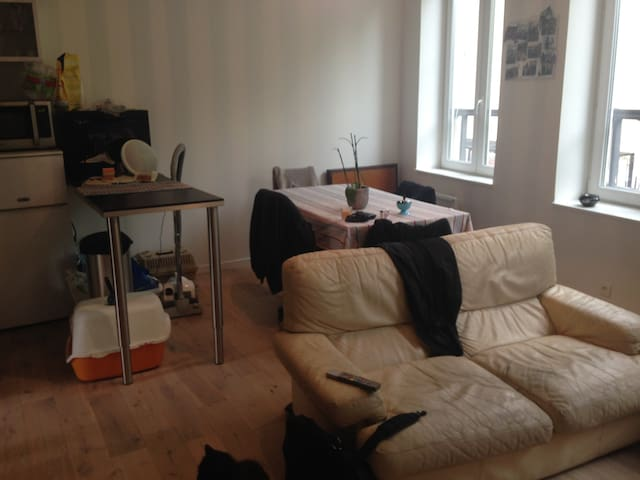 Appartement T2 40m2 EURO 2016 proxi métro - Lille - Apartment
