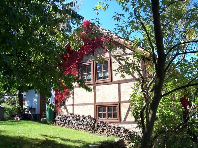 Ferienhaus Harz - Thale - Holiday home