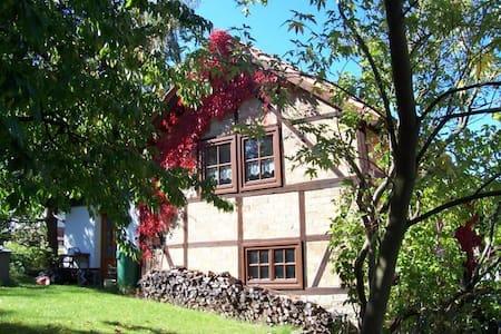 Ferienhaus Harz - Thale - 휴가용 별장