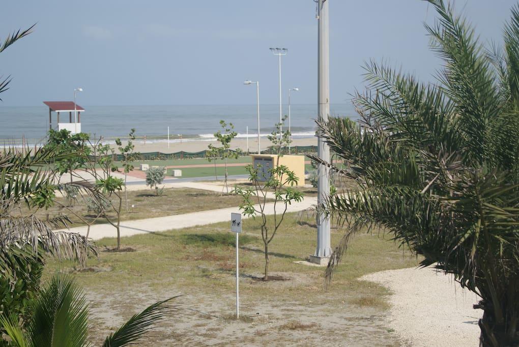 Paseo, playa y mar frente al apartamento...