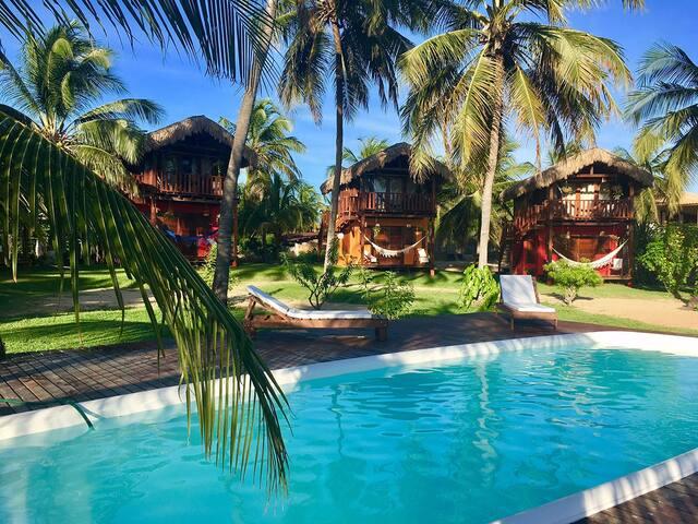 Pais-Tropical : Lodge à 50m de l'océan