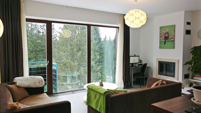 Apartment with spectacular view & cozy atmosphere - Brașov - Wohnung