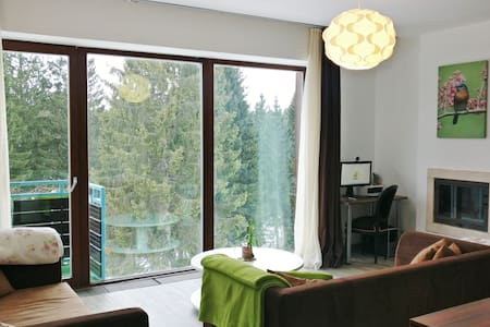 Apartment with spectacular view & cozy atmosphere - 布拉索夫(Brașov) - 公寓