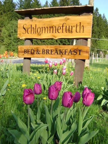 Bed & Breakfast Schlommefurth - Sankt Vith - Bed & Breakfast