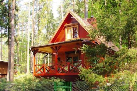 Uroczy domek położony w sercu lasu,Olsztyn/Rentyny - Gietrzwałd - Ferienunterkunft