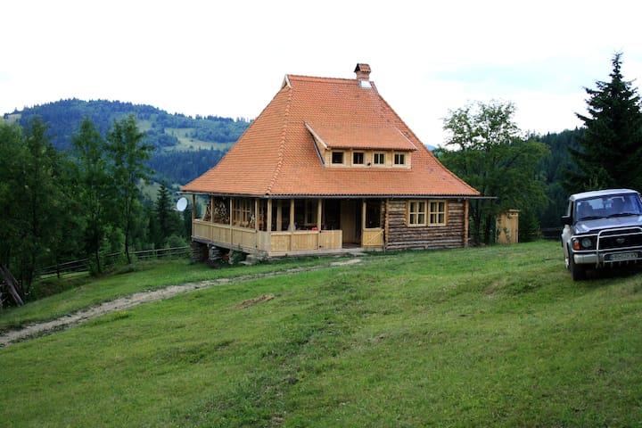 Renatta Guesthouse - RO - Dům