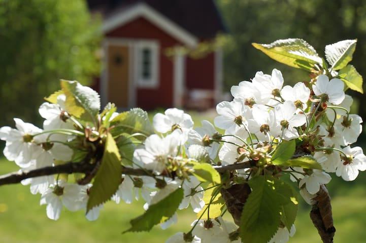 Ormliden - charmigt småländskt 1800-tals torp