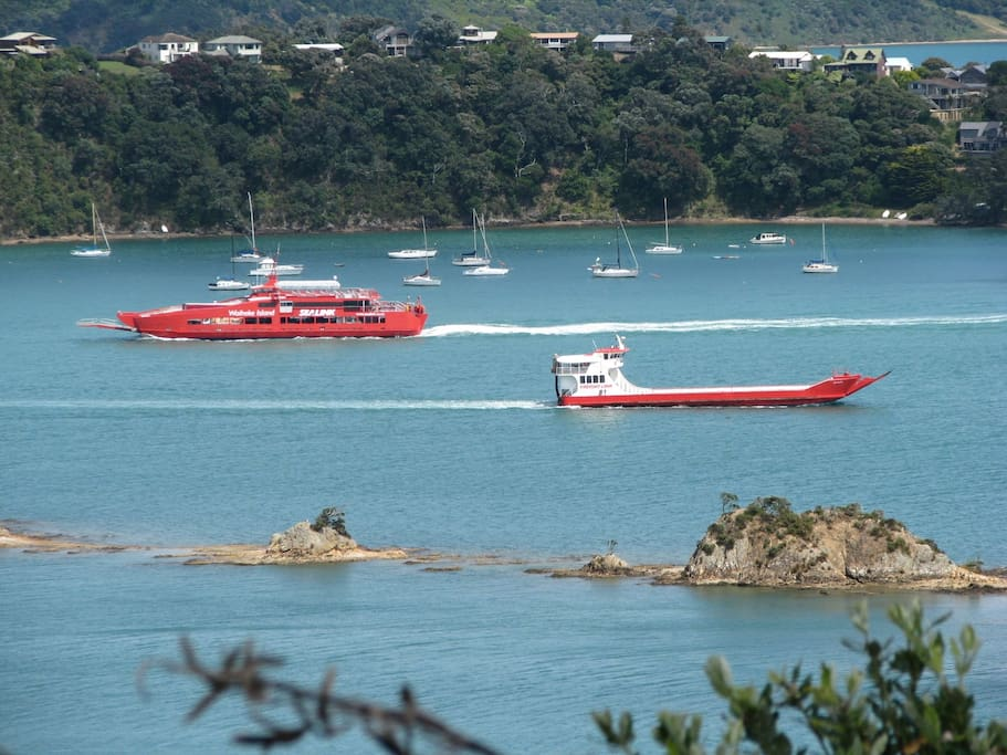 Sealink car ferries depart regularly from Auckland and arrive at Kennedy Point Wharf just across the bay.