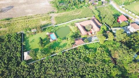 現代風格的房子附有游泳池 contemporary style house with pool