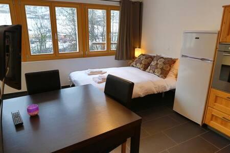 Large, Modern, Bright Studio 1 - Apartment