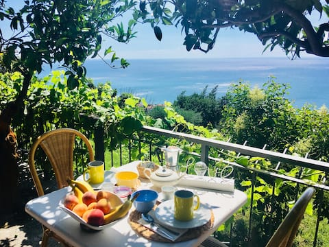 Wonderful house overlooking the Mediterranean sea