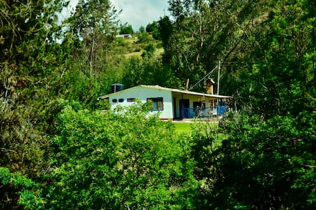 4 Bedroom House + Nature + Forest in 6 Hectares - Nemocón - B&B