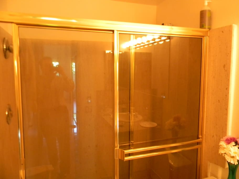 Master Bath Shower with Full Size 72 inch Brass Enclosure