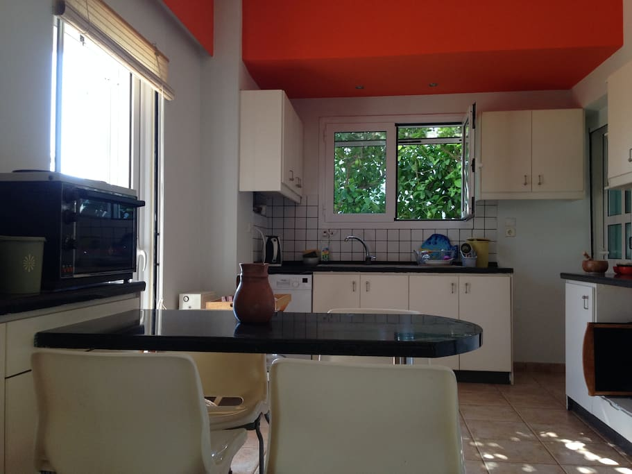 Cosy, kitchen with lemon trees outside the window.