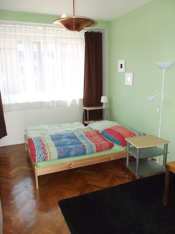 Cozy flat near the center of Prague - Praga - Apartamento