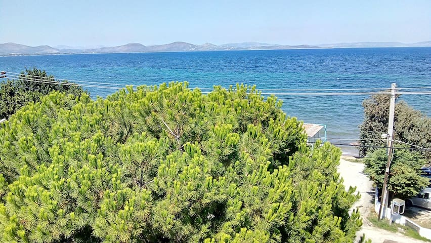 Nea Makri charming apartment (53 m²) on the beach