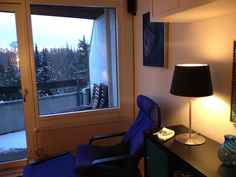 Livingroom - cosy chair with nice view