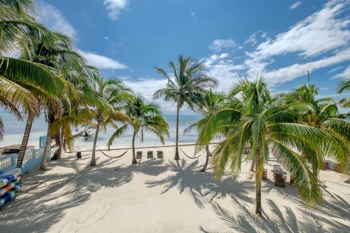 Sunset Beach Resort C2-Beachfront, Bicycles/Kayaks