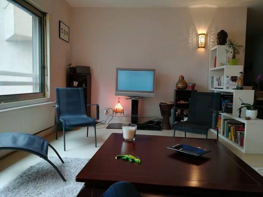 Appartement spacieux vue sa ne proche vieux lyon - Appartement vieux lyon ...