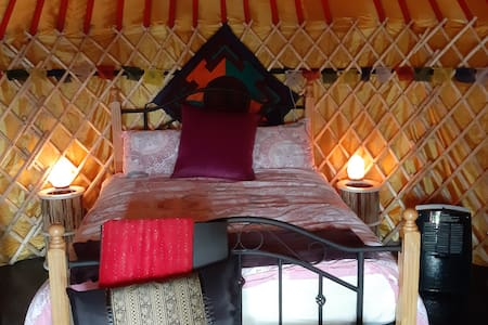 The 'Yurt Cobain' yurt at Willowbrook