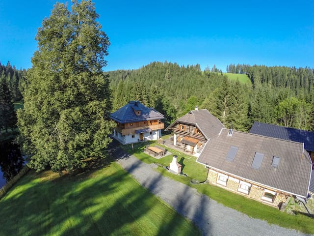 Holiday Alp Kreuth6 - House Enzian (1st floor) - Sankt Veit an der Glan - House