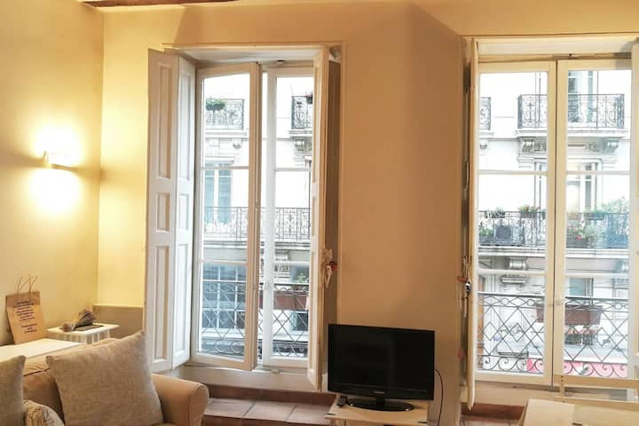 33M2 Sunshine APP. in the centre of Le Marais