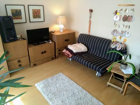 Bruntál pokoj s ložnicí v soukromém domě v centru.