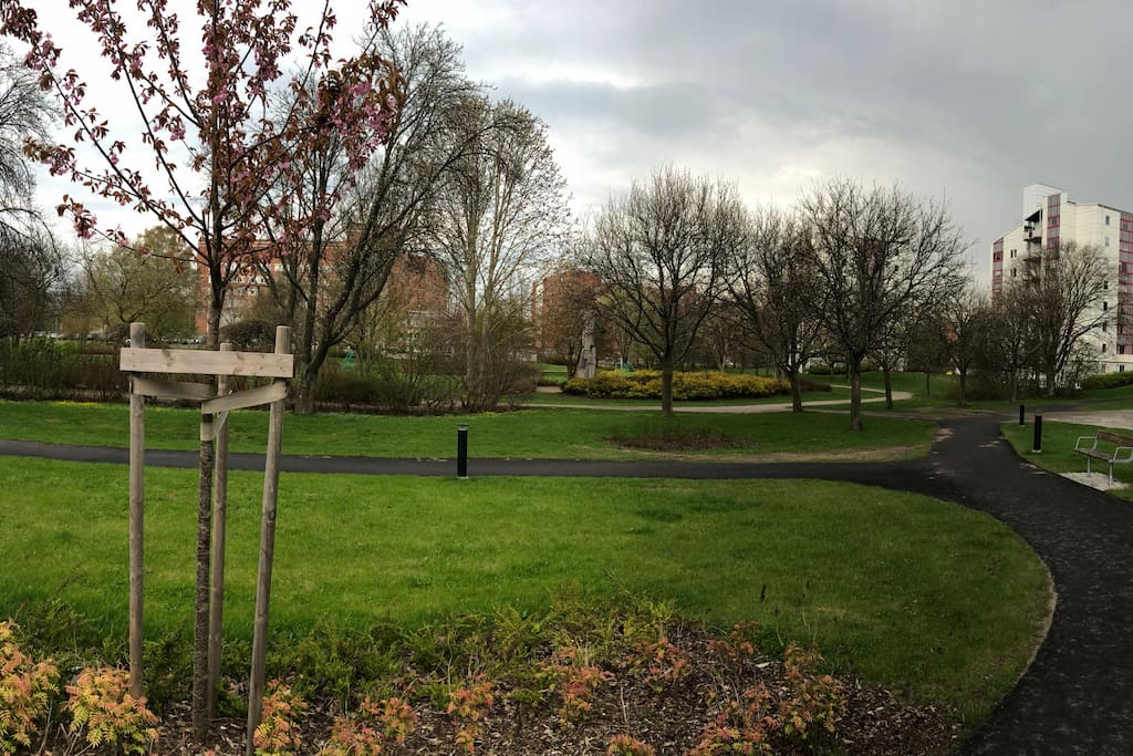 Park and the apartment block