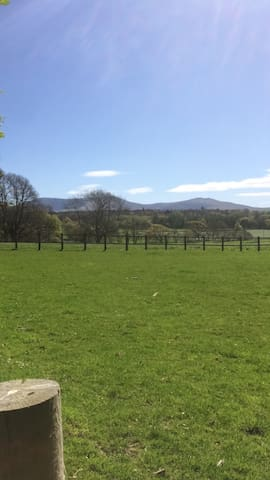 Pitch your tent overlooking Snowdonia - Caernarfon - Tent