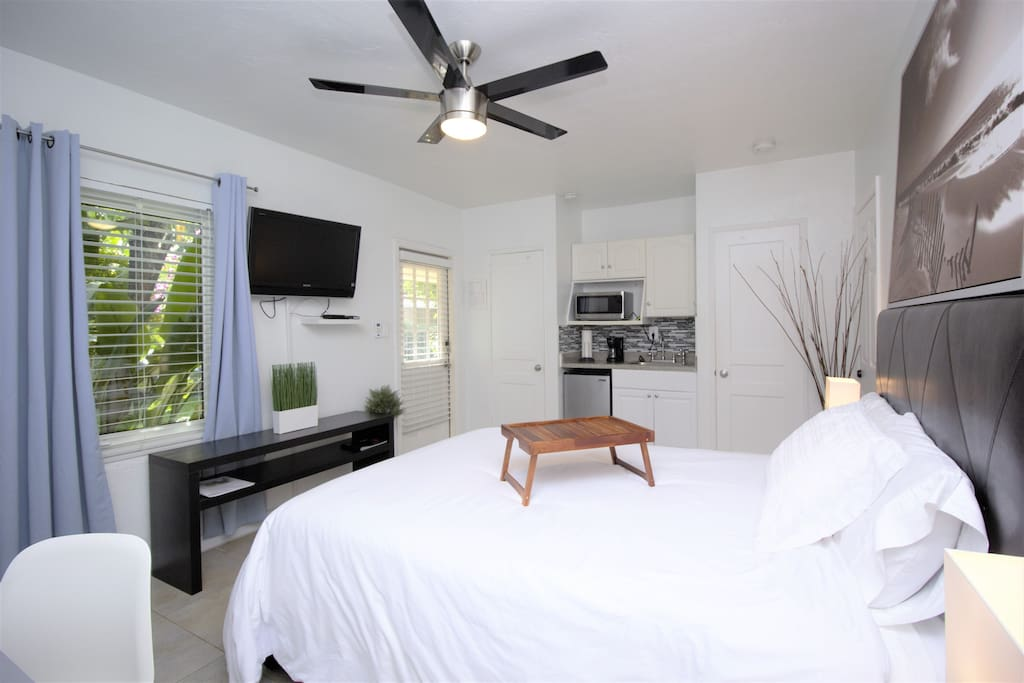 "Private entrance studio with Queen bed, kitchenette, private bathroom, 45"" Sony TV (upgraded cable), high speed Wi-Fi Internet, & mini-split A/C system"