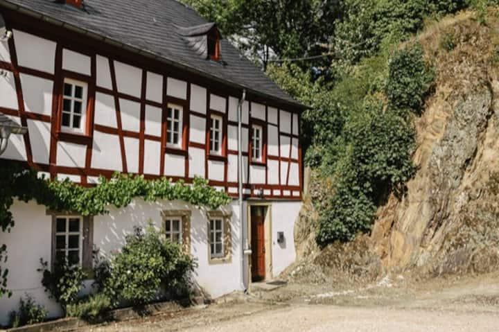 Inmitten der Natur im historischen Schlosshof