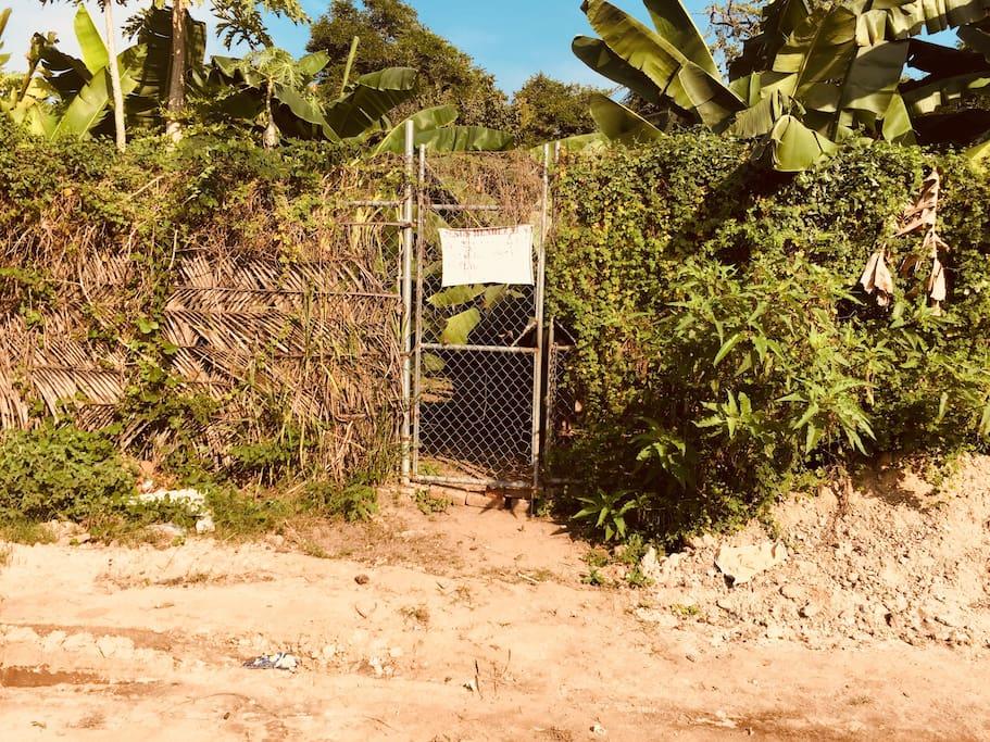 Terreno circulado con malla ciclón cubierto con hojas de palma y plantas vivas