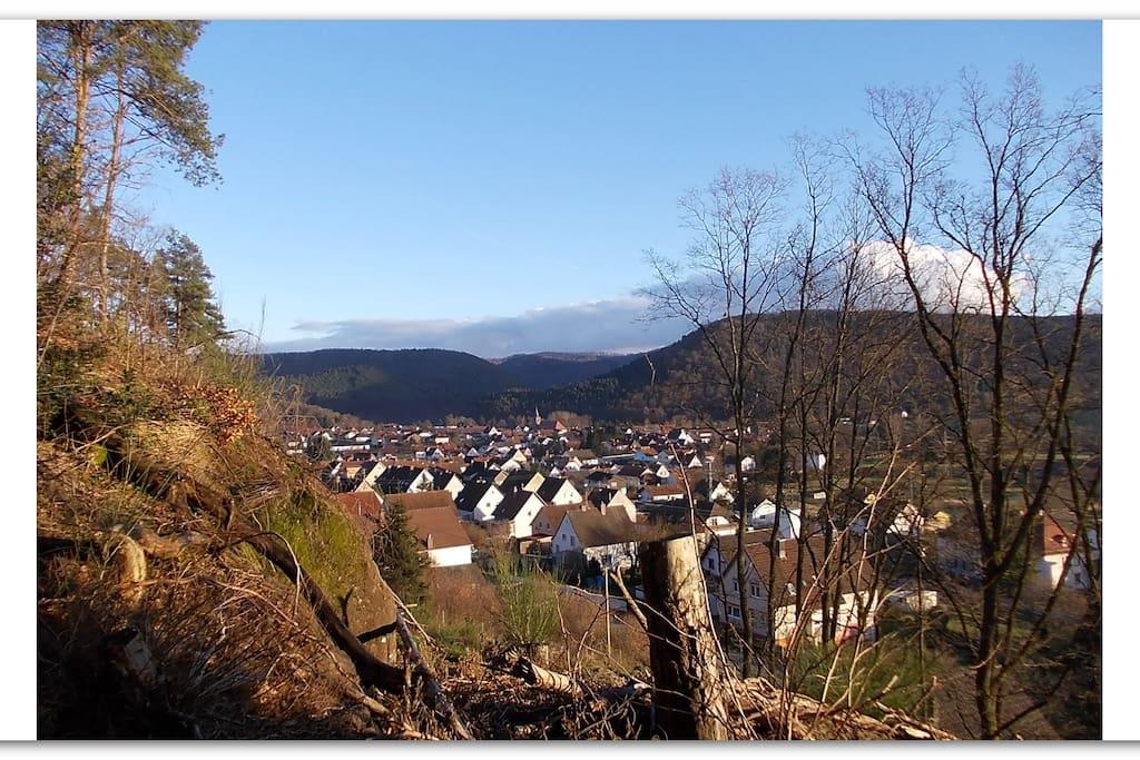 Fischbach vom Wald nahe der Wohnung gesehen.