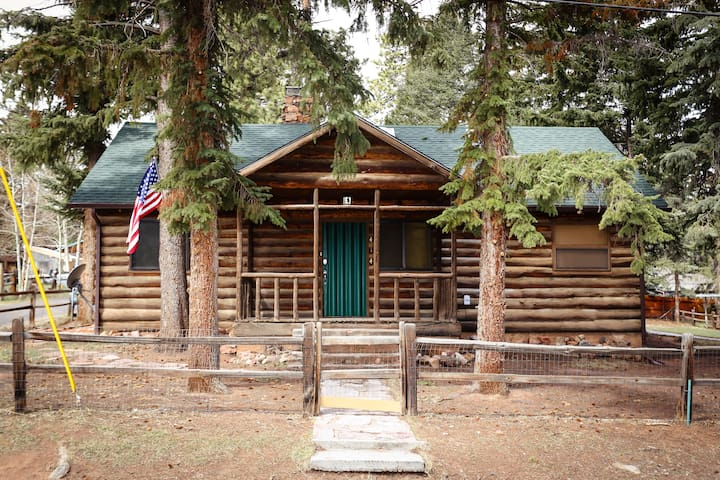 Cozy Woodland Park Cabin, walk to downtown