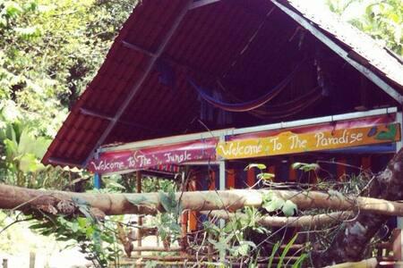 A marvellous experience in the tropical rainforest - Parrita - Pousada
