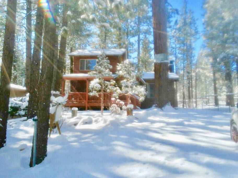 Cubby bear cabin close to slopes and village big bear for Big bear 2 person cabin