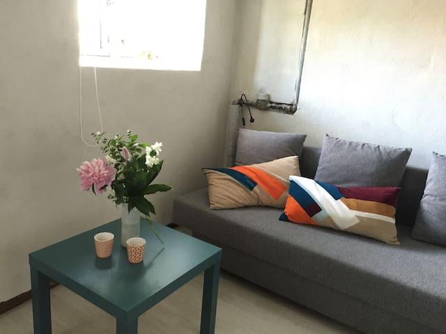 Cosy guestroom in villa - Köpenhamn - Hus