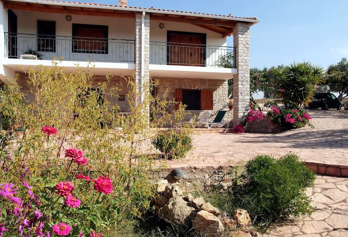Apartment on a 8000 sqm olive-grove - Pirgos - Huoneisto